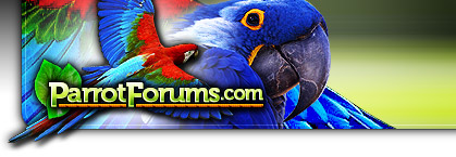 Parrot Forum Header Left